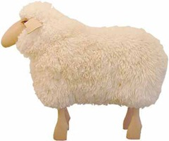 sheep-stool